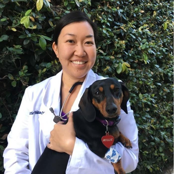 Dr. Kristie Watanabe<br/>DVM photo